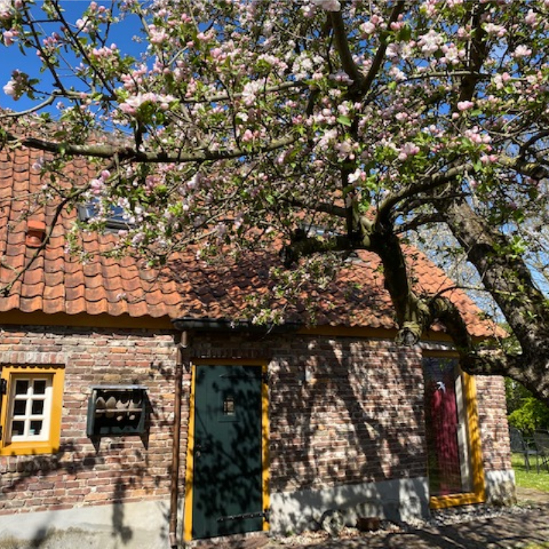 Brabant Van Gogh B&B Liempdejpg