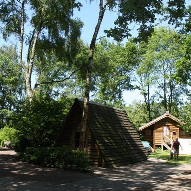 Nederland-Liempde-Natuurkampeerterrein Blue Woods-ExtraLarge